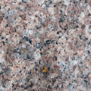 close detail of classic granite specimen from the area around Bowen, Queensland, Australia at rockhoundz.com.au