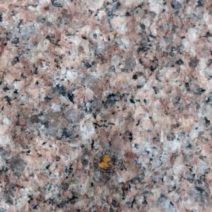 close detail of classic granite specimen from the area around Bowen, Queensland, Australia at rockhoundz.com.au
