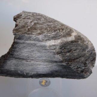 new zealand schist from rockhoundz.com.au