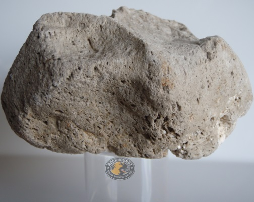 pumice from rockhoundz.com.au