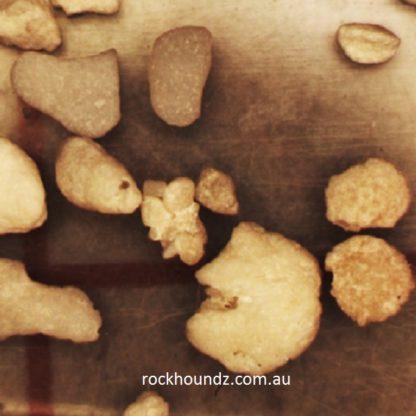 Central QLD foraminiferous sand at rockhoundz.com.au